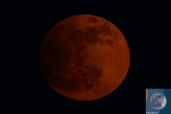 Lunar Eclipse April 2013