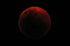 Lunar Eclipse June 2011